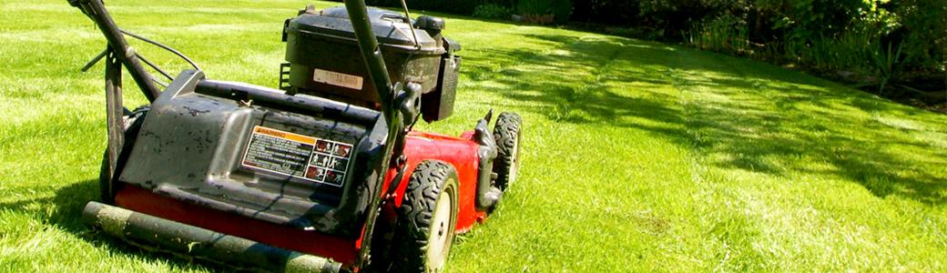 Entretien jardin pessac m rignac cestas for Devis tonte pelouse